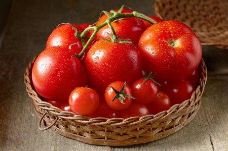 как правильно сажать рассаду помидор в открытый грунт