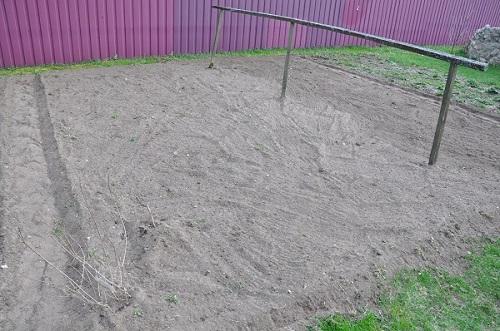 подготовка земли к посадке укропа