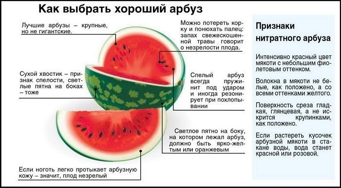 Как правильно выбрать спелый арбуз