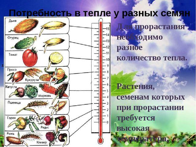 почему семена разных растений высевают в разные сроки